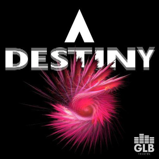 ANONYMIZE - Destiny cover embedding