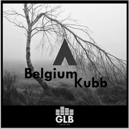 Anonymize - Belgium Kubb embedding cover